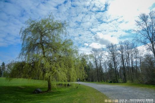 vancouver-winter-landscape-taiwan-13