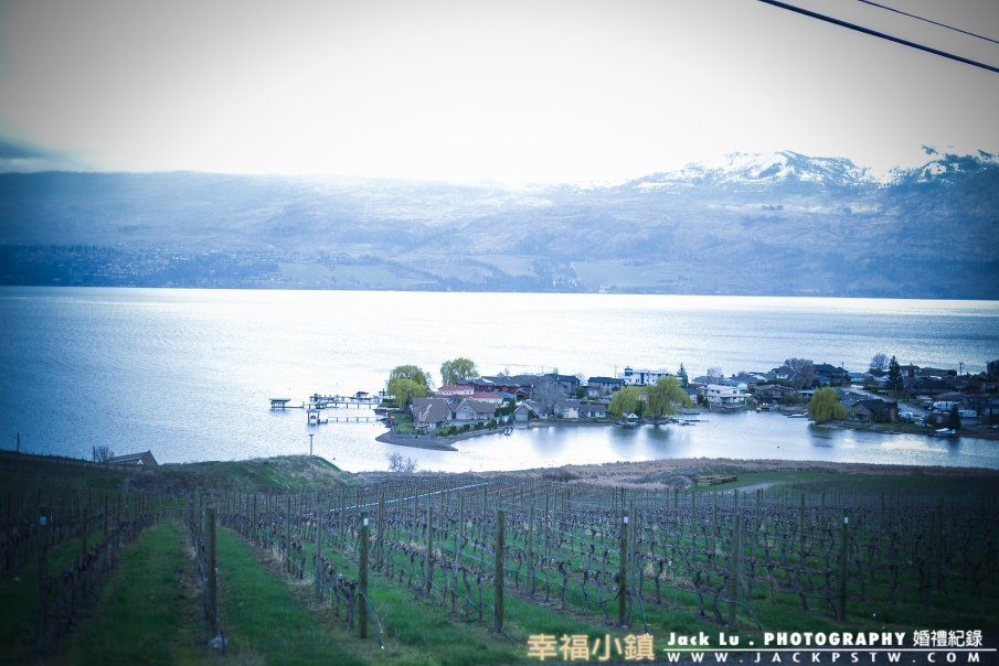 Bc-kalowna-photo-winery-15