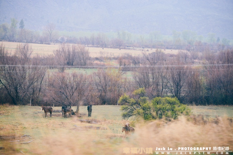 Bc-kalowna-photo-winery-52