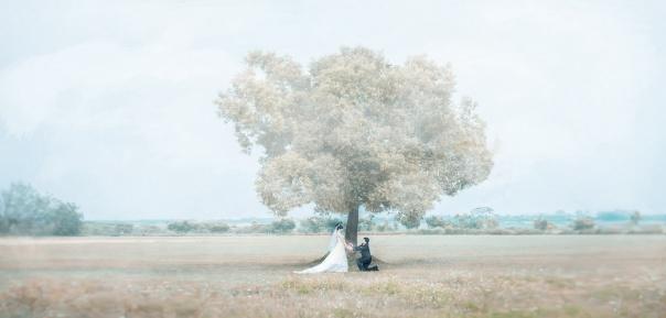 婚禮紀錄,秋天下的婚禮