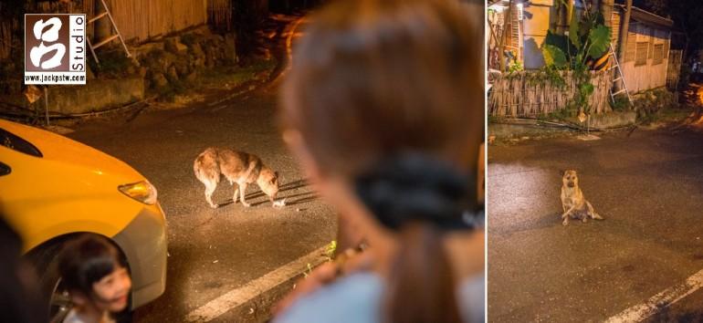 這張是親友坐車要離開時,當時新郎看到有隻有點年紀的野狗坐在外面,特別又跑進去拿了一隻雞腿給它吃,他這個動作最讓我印象深刻
