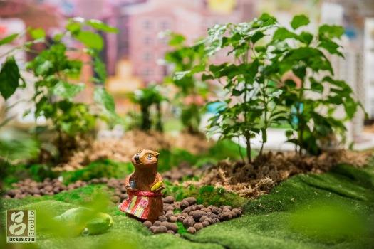 小小世界中的動物